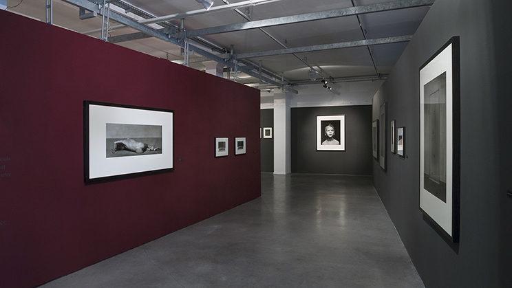 Instalation view - Stimultania Gallery